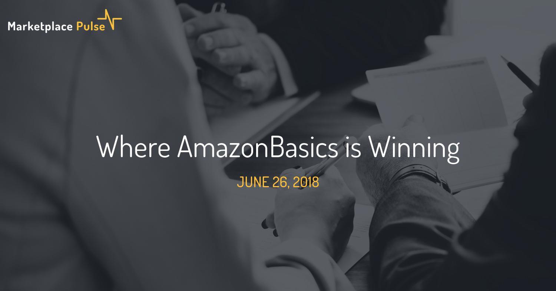 Where AmazonBasics is Winning