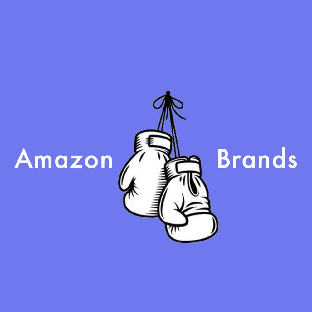 Amazon vs Brands